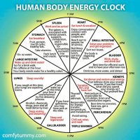 **Special Class for Bank Holiday Monday**BODY CLOCK Yoga Flow: Reset for the Spring Clock Change!