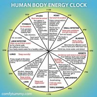 Body Clock Yoga Flow – Reset for Spring Clock Change | Sun 31st March | 11-12.30pm (BST)